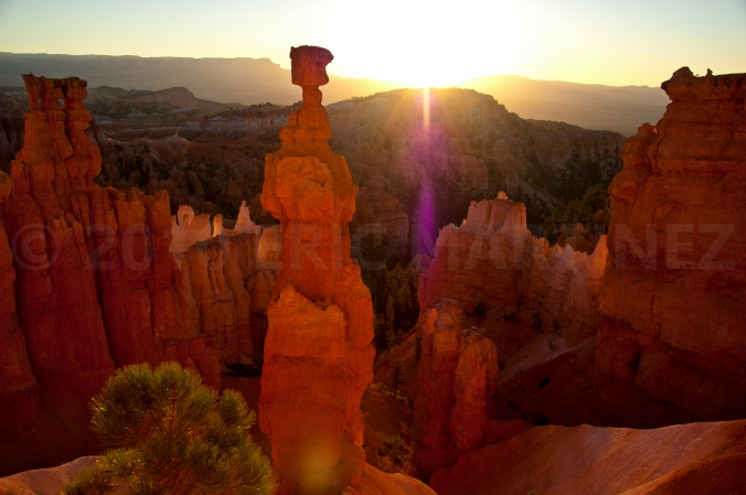 Thor's Hammer, Bryce Canyon NP, UT