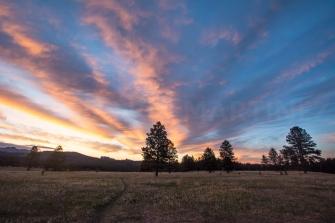 Custer State Park, Black Hills, SD