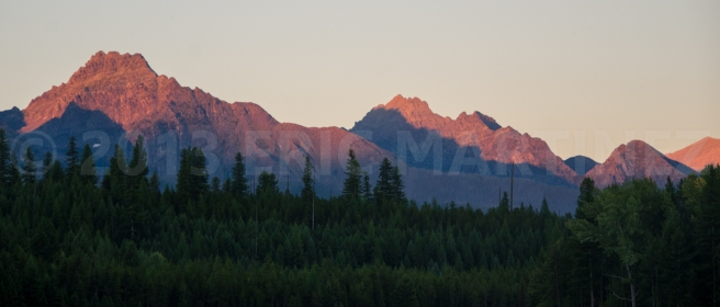 Flathead National Forest, MT