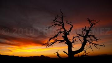 Mesa Verde NP, CO